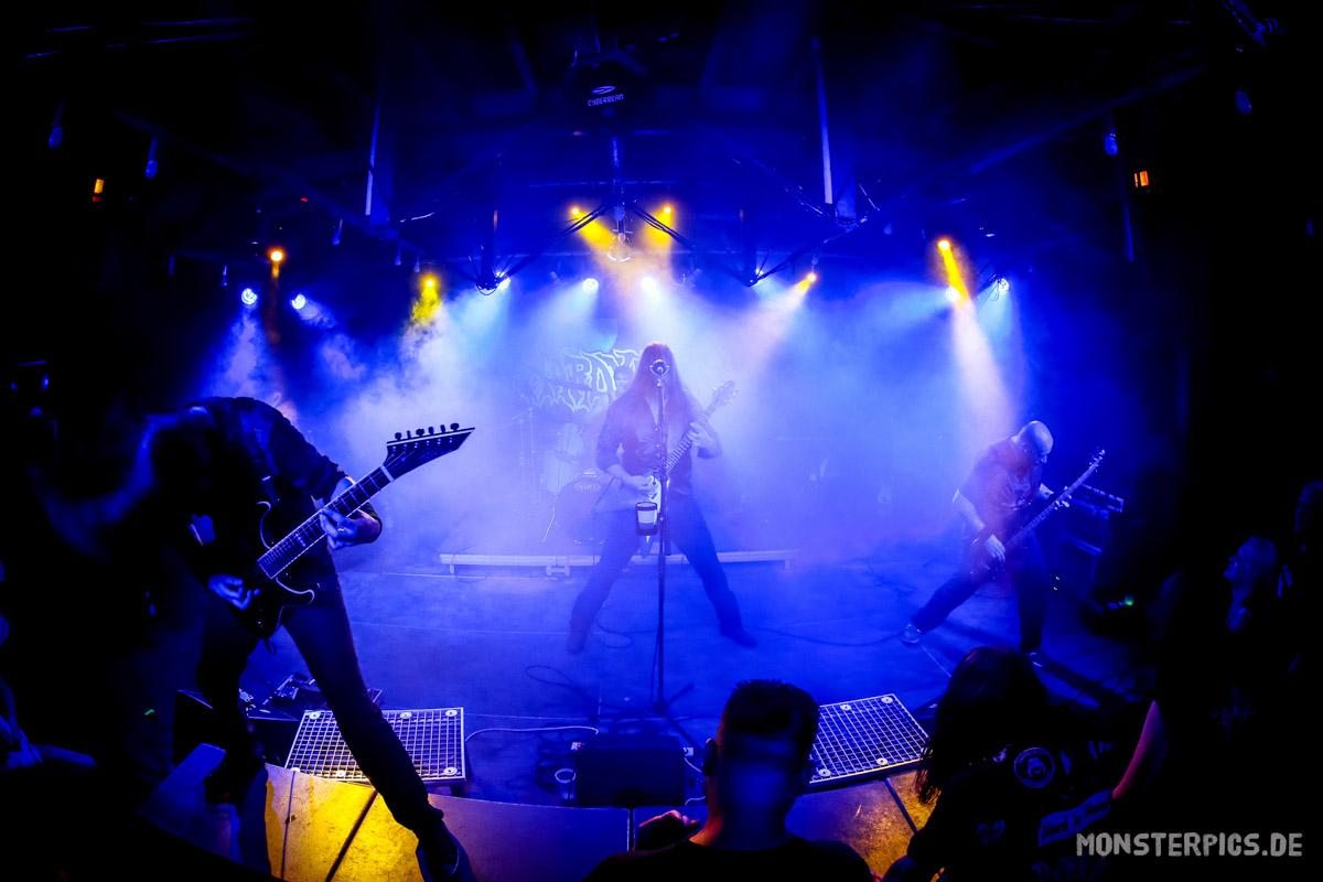 AARDVARKS Band