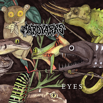 AARDVARKS Eyes